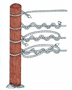 knot-illustration